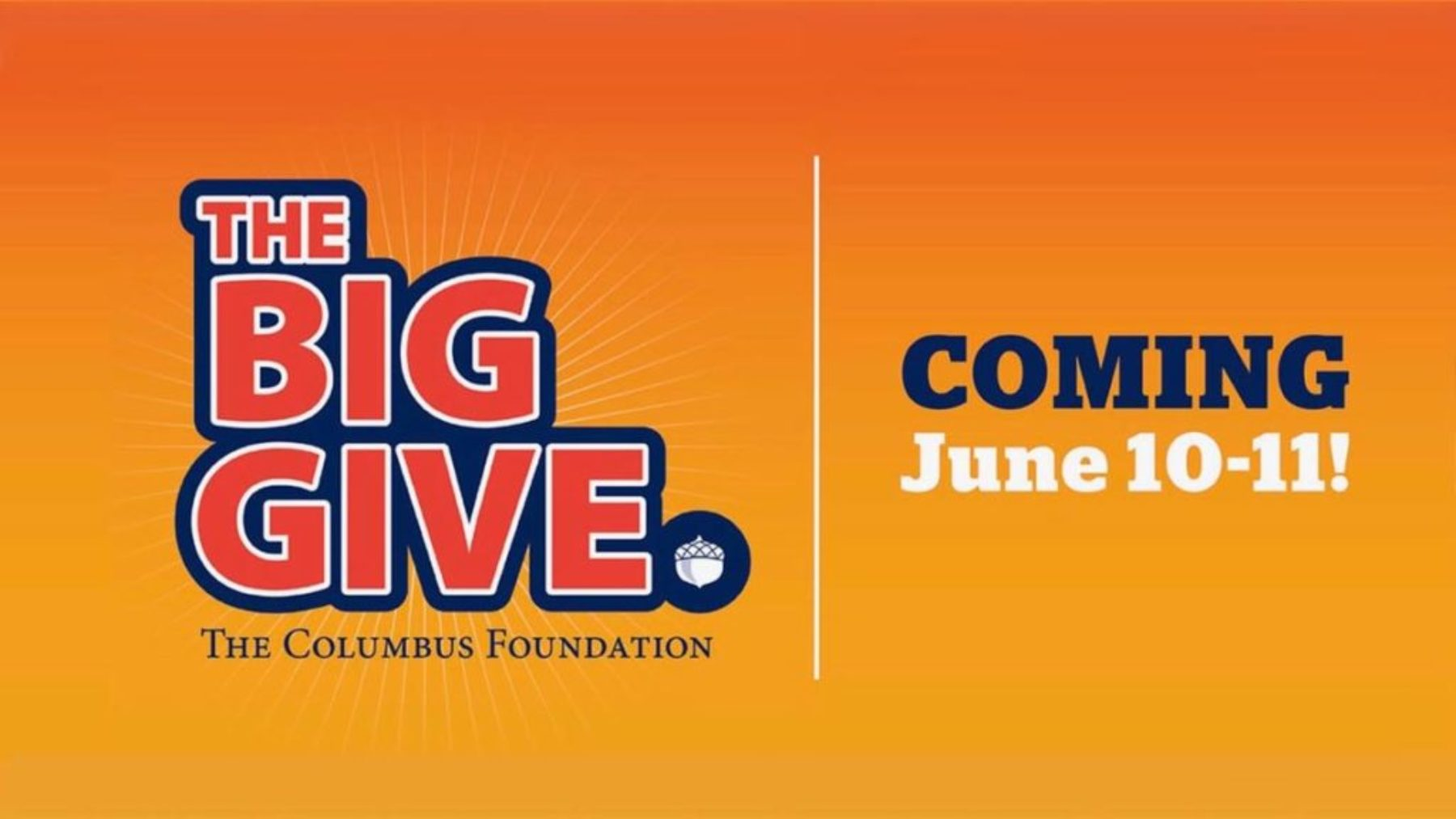 THE BIG GIVE June 10 - 11